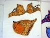 Underwear_Project5